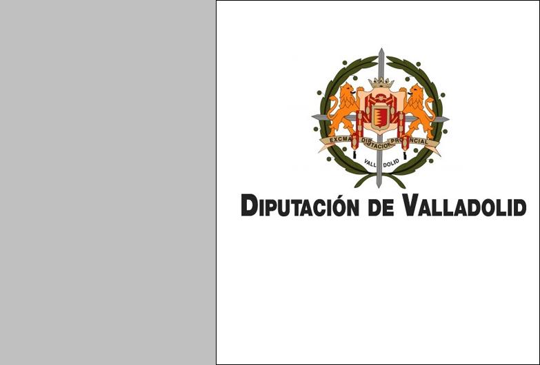 El Pleno de la Diputación de Valladolid aprueba por unanimidad el Plan Bienal de Cooperación 2020-2021 por importe de 20.896.420 euros